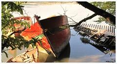 Cimetière de bateaux (mibric) Tags: mer france bretagne le bono bateau morbihan cimetière