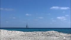 Mar y tierra (Salvatore Furia [pellicolosa-mente]) Tags: 7 75 formentera