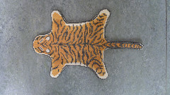 Tiger skin rug carpet cross stitch embroidered by me dollhouse miniatures 1:12 (Karin Riper ( 24 April 2015)) Tags: animal carpet miniatures crossstitch needlework handmade linen embroidery tiger fabric displays stitching rug 112 handstitched dmc dollhouse settings tigerskin roombox miniatureembroidery minaturerug miniatureneedlework miniaturecarpet karinriper