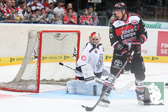 """DEL15 Kölner Haie vs. Thomas Sabo Ice Tigers 19.09.2014 069.jpg • <a style=""""font-size:0.8em;"""" href=""""http://www.flickr.com/photos/64442770@N03/15105287320/"""" target=""""_blank"""">View on Flickr</a>"""