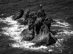 ... (TALOS300) Tags: blackandwhite bw espaa blancoynegro mar panasonic nubes tenerife altocontraste vieteado lumixfz200