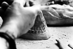 (Angela Schlafmtze) Tags: hand arte kunst mani bn projekt biancoenero zhne artista teschio gebilde progetto schdel denti kreation knstlerin modellieren modellare schdelmodell