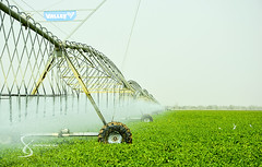 """Valley technology 