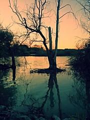 Lago di Chiusi al tramonto