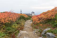 (GenJapan1986) Tags: 2014         hokkaido japan travel nikond600 zf2 distagont225 carlzeiss