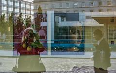 Everything Is Inside Out (Louise Lindsay) Tags: ohio selfportrait reflections journey 2012 wheelchairs clevelandclinic 5512 curvedglass healingtheheart familypavilion lisettedogstandardpoodleportraitkeylargofloridaspcrpsp