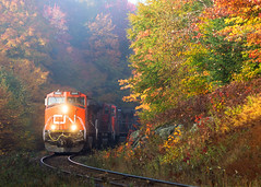 CN 368 @ Lac-aux-Sables, QC (Mathieu Tremblay) Tags: railroad canada fall colors saint electric cn train automne jean general quebec couleurs lac railway canadian foliage national locomotive ge chemin feuilles fer canadien saintjean subdivision 368 lacsaintjean 2685 c449w lacauxsables