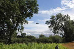 Spitfire through the Trees. (Seckington Images) Tags: ww2 spitfire warbirds victoryshow2013