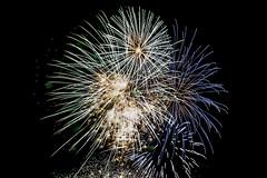 IMG_3057 (Inch eyeland) Tags: beach nature bondi docks surf fireworks wildlife sydney bridges australia melbourne healesville bluemountains kangaroo perth koala greatoceanroad operahouse harbourbridge blackswan stkilda 12apostles coogee dandenongs healsville