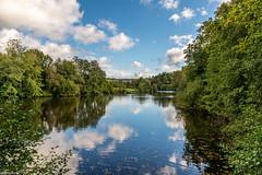 04Oct2014_Winkworth Arboretum NT_0663.jpg