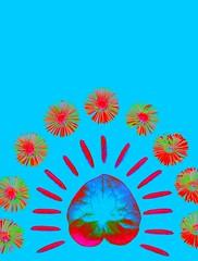 56241.16 Asarum europaeum, Hosta, Symphyotrichum novae-angliae (horticultural art) Tags: flowers leaf seedpods psychedelic hosta newenglandaster symphyotrichumnovaeangliae asarumeuropaeum europeanginger horticulturalart