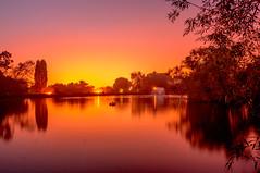Lake Meadows Sunset (petach123 (Peter Tachauer)) Tags: