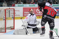 "DEL15 Kölner Haie vs. Thomas Sabo Ice Tigers 19.09.2014 002.jpg • <a style=""font-size:0.8em;"" href=""http://www.flickr.com/photos/64442770@N03/15268892206/"" target=""_blank"">View on Flickr</a>"