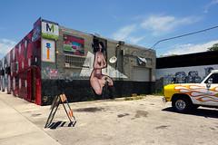 Miami, FL (Minno Ramrez) Tags: urban streetart art landscape mural florida miami structure wynwood contemporarylandscape newtopographics