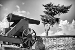 Fort Macon sentinel (Rob Mesite) Tags: statepark northcarolina civilwar ftmacon