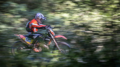 Biker (Marin Mitrica) Tags: green sport speed forest outside day offroad motorcycle biker panning enduro