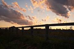 sundown fence... HFF! (IndyEnigma) Tags: blue summer sky clouds fence twilight weeds indiana hff d80