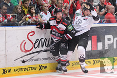"""DEL15 Kölner Haie vs. Thomas Sabo Ice Tigers 19.09.2014 066.jpg • <a style=""""font-size:0.8em;"""" href=""""http://www.flickr.com/photos/64442770@N03/15288850131/"""" target=""""_blank"""">View on Flickr</a>"""