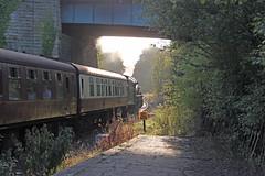 61034 Chiru at Sleights (Andrew Edkins) Tags: sunset geotagged bongo whitby thompson sleights steamtrain b1 northyorkshiremoorsrailway lner eskvalley chiru preservedrailway 61264 61034 railwayphotography goingawayshot