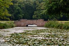 Berlagebrug (hadewijch) Tags: netherlands europe nederland gelderland hogeveluwe nationaalparkhogeveluwe 18200mmf3556 nikond90