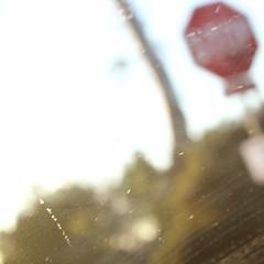. (Urbnfaun) Tags: california sign san diego stop roll suburbs windshield