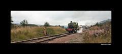 Rosyth (martin289) Tags: heritage southwales wales industrial weekend event gala locomotives kettles andrewbarclay pontypoolandblaenavonrailway martin289 griffinimages rheilforddpontypwlablaenafon
