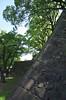 """熊本城16 • <a style=""""font-size:0.8em;"""" href=""""http://www.flickr.com/photos/89606208@N07/15428381572/"""" target=""""_blank"""">View on Flickr</a>"""
