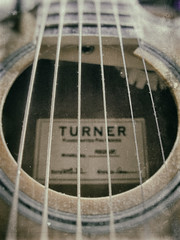 277/365 - Turner Guitar (efsb) Tags: guitar turner project365 277365 2014yip 2014inphotos