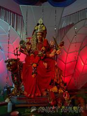DSCN0517 (ankit10217) Tags: pune durga shakti parvati ambika sati bhairavi katyayani bhuvaneshwari chinnamasta navdurga mahagauri kaalratri siddhidatri kushmanda chandraghanta dhumavati skandamata brahmacharini vaishnomaa shailaputri durgapuja2014 navratri2014 ankitahuja shivaradni bhavaani navratridurgapuja2014