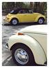 17_02_05_086p (2) (Quito 239) Tags: volkswagen 1971volkswagen 1971volkswagensuperbeetle superbeetleconvertible vw bug vocho escarabajo puertorico haciendaigualdad volky