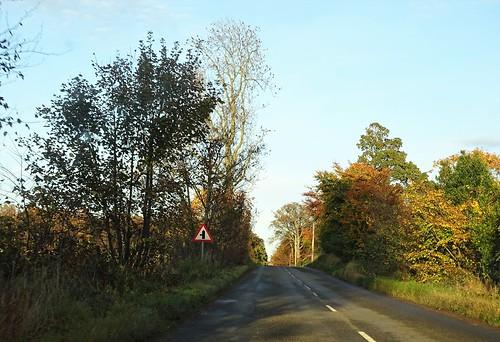 536. Scotland 2016