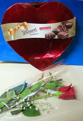 Red Rose And A Box Of Chocolates. (dccradio) Tags: lumberton nc northcarolina robesoncounty happyvalentinesday valentine valentinesday rose redrose babysbreath whitmansampler heart candy chocolates bluebackground stilllife chocolate leaves greenery