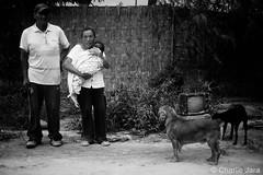 ►Juan (69 Años) y Olga (76 años) perdieron su casa a través del fenómeno del niños costero. Piden algo gobierno módulos de vivienda y maquinarias para su labor de agricultura. #FuerzaPerú #ResistePerú #Perú #PerúEnEmergencia #UnaSolaFuerza (Charlie.Jara) Tags: unasolafuerza fuerzaperú resisteperú perú perúenemergencia