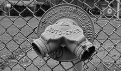 Auto Sprinkler (brutus61534) Tags: auto sprinkler fire connection bw black white blackwhite detail digital tamron fence chainlink nikon