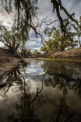 Darling River Tributary (robertdownie) Tags: red sunset water reflection river clouds broken hill australia dry darling outback basin gums murray stagnant menindee nsw kinchega wilcannia murraydarling