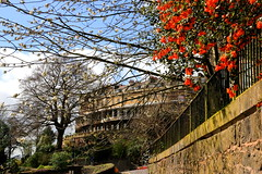 Spring In Clifton (acwills2014) Tags: bristol clifton spring blossom buds textures railings fences trees depth wall