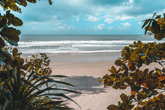 (Ricardo Perrella - Fotografia) Tags: sonya6300 sel1650 beach brazil praias guaruja