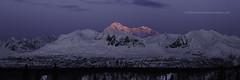919_Panorama1 (Ed Boudreau) Tags: alaska alaskalandscape landscape landscapephotography winter winterscene winterscape denali mtdenali mtmckinley denalirange denalistatepark mountains alaskamountains mountainrange snow sunrise alpenglow usa