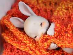 Orange (AluminumDryad) Tags: cocoriang tobi anthrobjd bjd balljointeddoll resin bunny rabbit knitting lace orange yarn sleepy