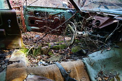 IMG_2672 (Irina Souiki) Tags: rusty crusty cars mcleansautowreckers milton ontario old oldcars