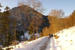 SAM_0862 (a.podkowińska) Tags: mountain backlight snow path neige montagne snieg sciezka