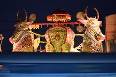 Chandannagar (Debatra) Tags: chandannagar chandernagore cgr 53047 viswabharati fastpassenger passenger bengal westbengal d3300 55200 55200mm nikon nikkor night train railways rail railroad railwaystation indianrailways india ir irfca easternrailway easternindia er hwhdivn howrahdivision