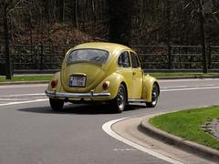 VW COX (Jack 1954) Tags: voiture car volkswagen cox paysage landscape ancêtre classiccar