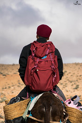 Carry on, you will eventually find your way (sanaturki) Tags: chachia backpack donkey carrying clouds red tunisia southoftunisia nikon d5300