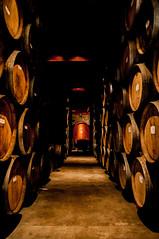 Cheese Please (CD_MT) Tags: california contrast napavalley nikkor nikon nikond300 sanfransisco winery age barrels cellar dark floor hallway oak stacks