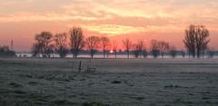 Morning moped (Jorden Esser) Tags: nederlandvandaag fence fencefrday fog grass groundfog haze hff moped sun sundawn sunrise trees