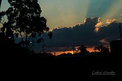Amazing Sunset (ludovic faucillon) Tags: fuji fujifilm xt2 street art australia sydney windsor building town old fashioned stuff beautiful sunset godray god ray