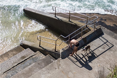 Sydney trip 2017 (jpl.me) Tags: sydney australia travel tourism 2017 bondi canonpowershotg9x man male swimsuit swimwear swimmer dog beach bondibeach sea ocean waves