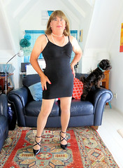 A pair of bitches (Trixy Deans) Tags: crossdresser cd cute crossdressing crossdress classic classy cocktaildress xdresser sexy sexytransvestite sexyheels sexylegs sexyblonde tgirl tv transvestite transgendered transsexual tranny trixydeans tgirls transvesite trixy tg