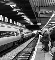 Delays at Euston (Wayne Stiller) Tags: commuter euston london platform station street train